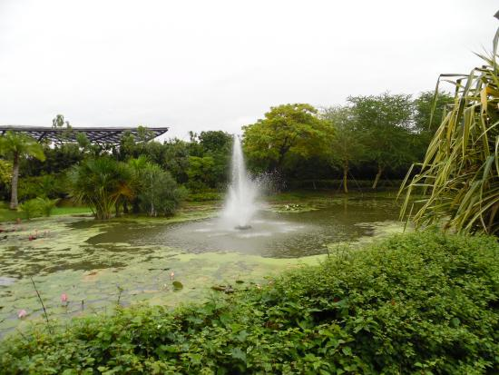 pond gardens by the bay entrance
