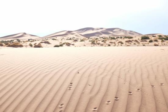 Original Morocco Tours: Sea sand of Erg chebbi tour by originalmoroccotours.com