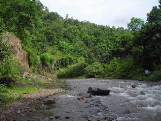 Bharuch, Indien: Shoolpaneshwar Wildlife Sactuary