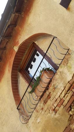 Foto Agriturismo Marciano