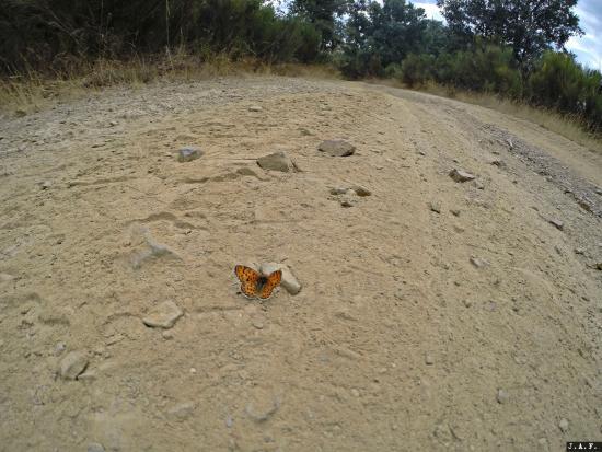 Pandorado, Hiszpania: Ruta por la Reserva