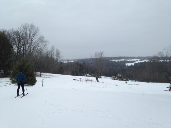 Craftsbury Common Foto