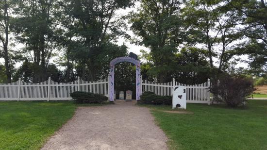 Waterbury, Vermont: Flavor graveyard