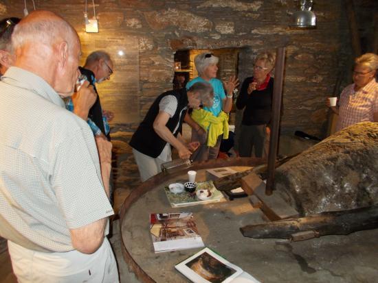 Μουσείο Ελιάς Κυκλάδων