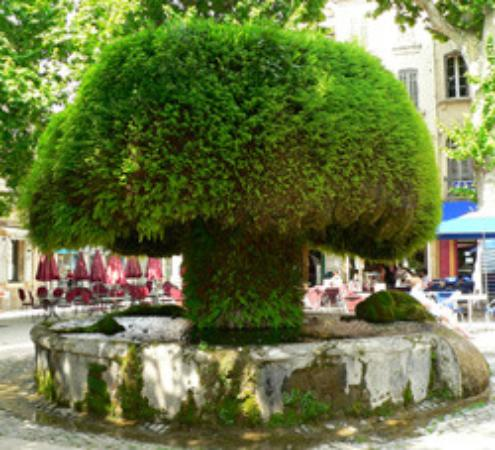 Fontaine mousse photo de fontaine moussue salon de for Le bureau salon de provence