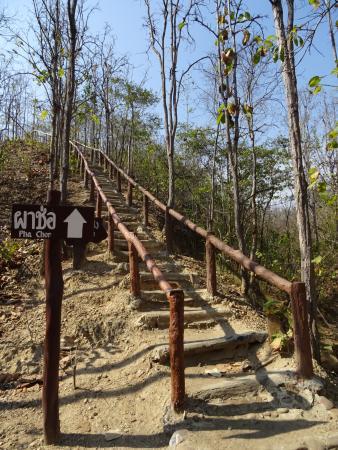 Doi Lo, Таиланд: Short walk