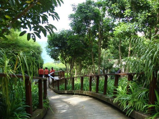 Paresa Resort Phuket Photo