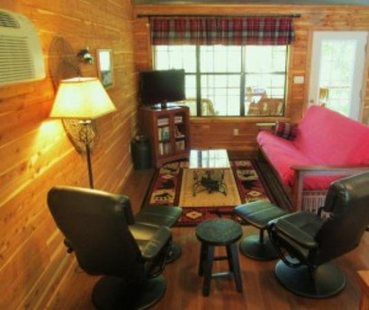 Norfork, AR: Creekside Cabin - Living area