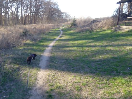 Cibolo Nature Center: Great for dog walks.