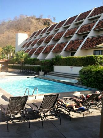 Beautiful mocking jay picture of villas sol hotel for Villas sol playa hermosa