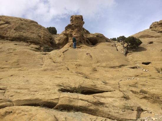 White Mountain Petroglyphs: Rock Formations near WM Glyphs