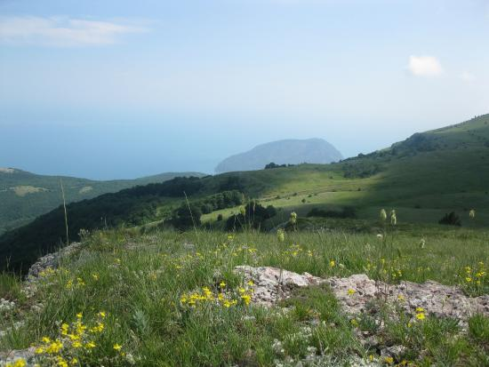 Crimea Nature Preserve