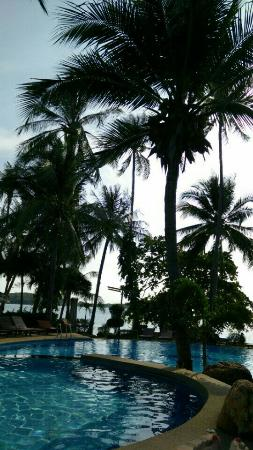 Palm Island Hotel: 2016-02-14-09-03-42-49_large.jpg