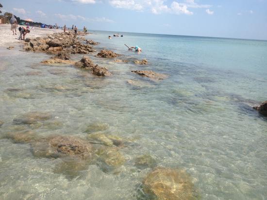 a 1 vacations venice florida - photo#21