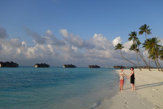 Lankanfushi : Just stunning.