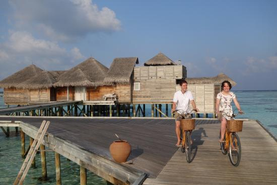 Lankanfushi : Every photo could be an advertisement!