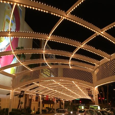 the entrance to golden nugget at night picture of golden nugget rh tripadvisor co uk