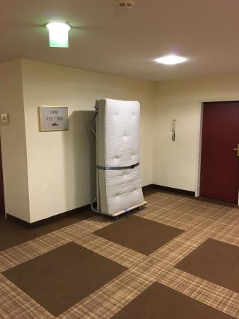 Hilton Nuremberg: photo0.jpg