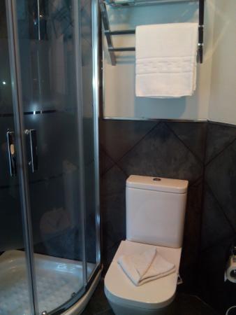 Hosteria Santander : baño 101