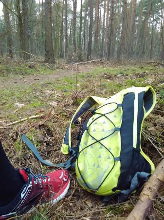 Run Green Berlin