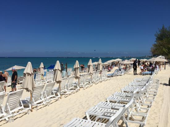 Cayman Segway Tours Royal Palms Beach Club Seven Mile