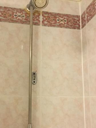 Water Pressure Good However Shower Head Was Dirty Picture Of Hallmark Hotel Irvine Irvine