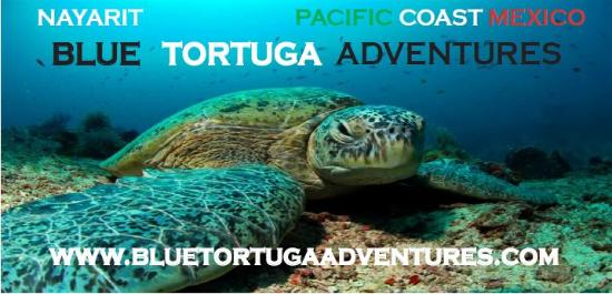 La Cruz de Huanacaxtle, México: Customied and personal unique Ocean and Volcano Adventures