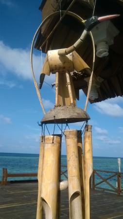 Patuno Resort Wakatobi Photo