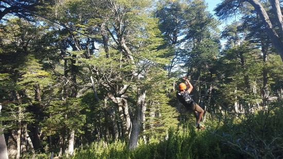 Canopy Cerro Bayo Rio Bonito