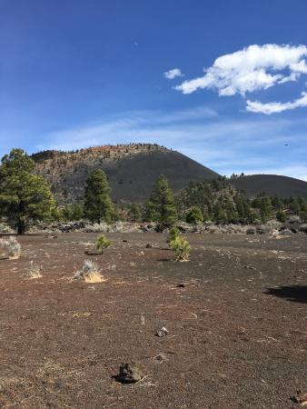 Sunset Crater Volcano National Monument: photo1.jpg