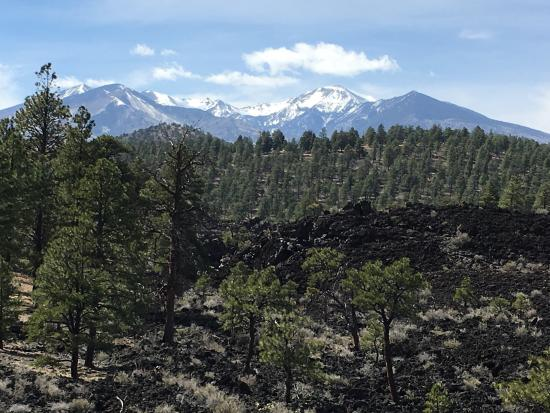Sunset Crater Volcano National Monument: photo2.jpg