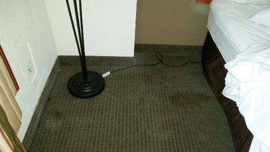 Comfort Inn Alexandria West - Landmark : They covered the stains in the floor with a chair