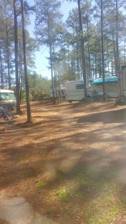 Townville, Güney Carolina: Nestled in the Pines
