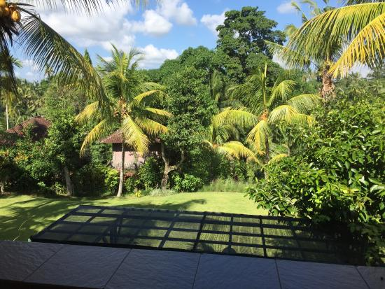 photo2 jpg picture of bucu view resort ubud tripadvisor rh tripadvisor com