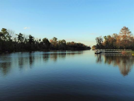 Herlong Park: Calm waters