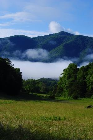 Townsend, TN: This is one of my favorite spots in Cades Cove.