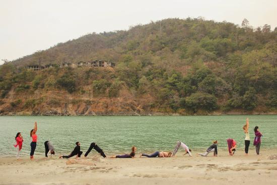 Rishikul Yogshala: yoga in rishikesh