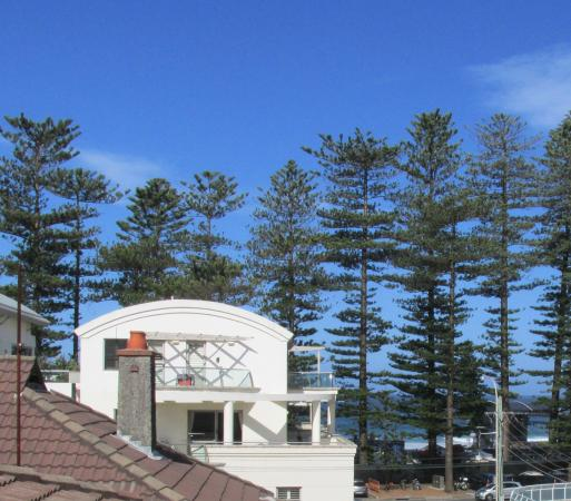 Manly Guest House: View from room 17
