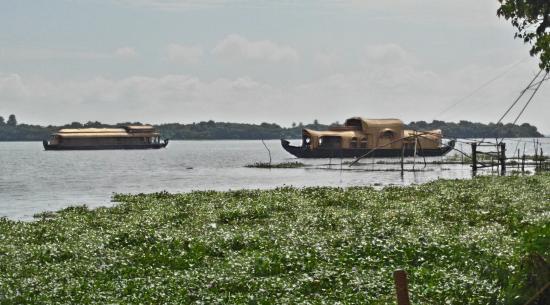 Deshadan Backwater Resort Photo