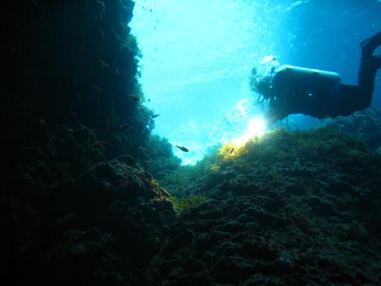 Argentario Divers: Una sub aglli Archetti, Giannutri