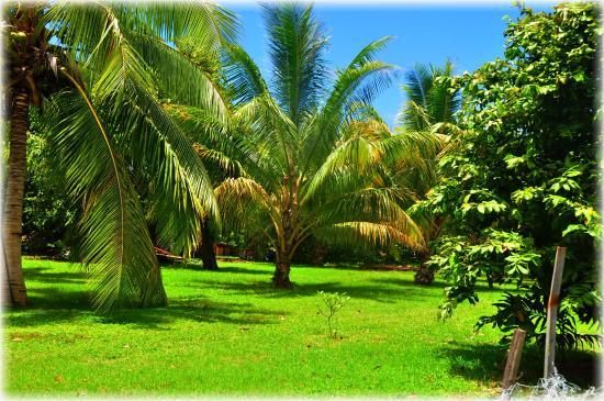 Moorea. Polinesia Francesa.