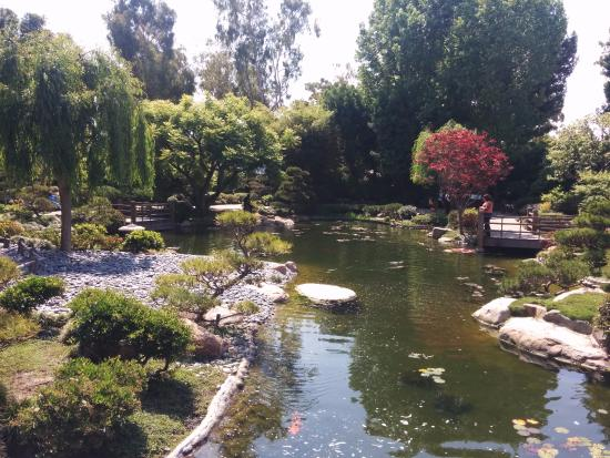 earl burns miller japanese garden picture of earl burns miller rh tripadvisor com