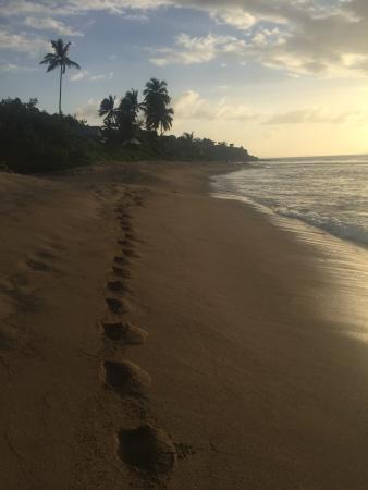 Nail Bay, Virgin Gorda: Sunset walk