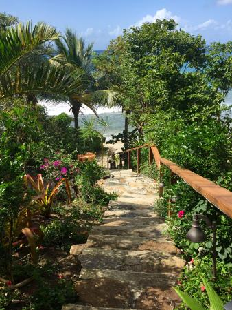 Nail Bay, Virgin Gorda: Steps to the beach