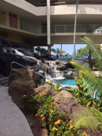Sheraton Kona Resort & Spa at Keauhou Bay: can see ocean from pool
