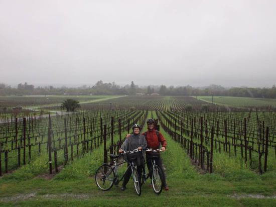 Sonoma Segway : Winery in the rain