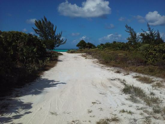 Whitby, North Caicos: Path to the beach