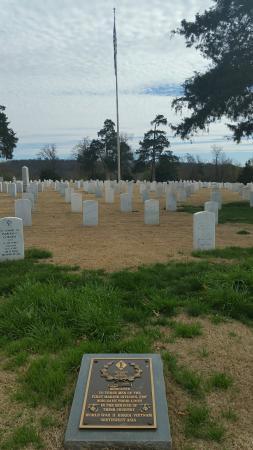 National Cemetery: 20160316_150850_large.jpg