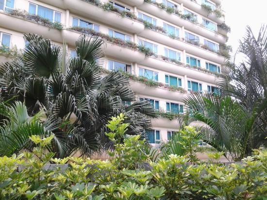 Shangri-La Apartments Photo