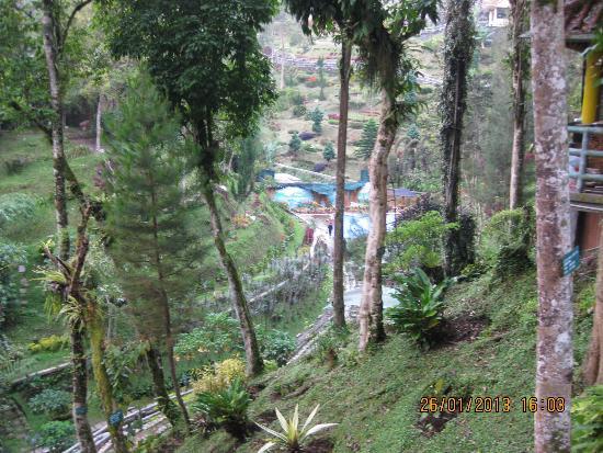 pemandangan yg asri nan hijau picture of lumbini natural park